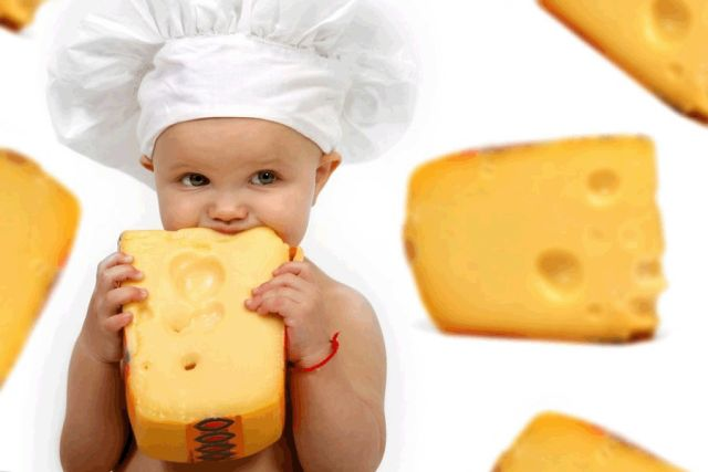 is cheese good for babies copy